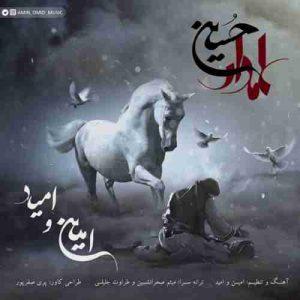 دانلود آهنگ جدید امین و امید علمدار حسین