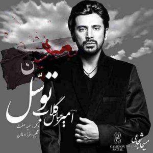 دانلود آهنگ جدید امیر عباس گلاب و حمید صفت توسل