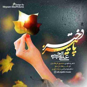 دانلود آهنگ جدید علی رجبی دختر پاییز