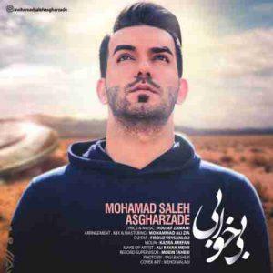 دانلود آهنگ جدید محمد صالح اصغرزاده بی خوابی
