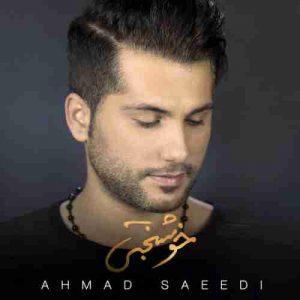 دانلود آهنگ جدید احمد سعیدی خوشبختی