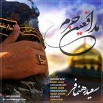 دانلود آهنگ جدید سعید رهنمافر به نام مدافع حرم