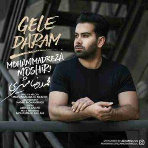دانلود آهنگ جدید محمدرضا مشیری گله دارم