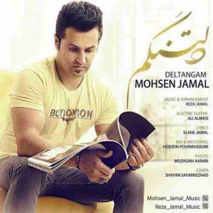 دانلود آهنگ جدید محسن جمال دلتنگم