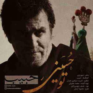 دانلود آهنگ جدید حبیب تو حسینی