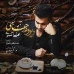دانلود آهنگ جدید علی اکبری به نام دیوونه احساسی