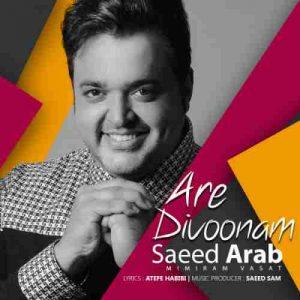 دانلود آهنگ جدید سعید عرب آره دیوونم