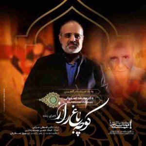 دانلود اجرای زنده محمد اصفهانی کوچه باغ راز