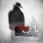 دانلود آهنگ جدید ناجی به نام حیدر غریبی