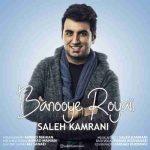 دانلود آهنگ جدید صالح کامرانی به نام بانوی رویایی