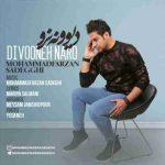 دانلود آهنگ جدیدمحمد فرزان صادقی به نام دیوونه نرو