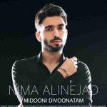 دانلود آهنگ جدیدنیما علی نژاد به نام میدونی دیوونتم