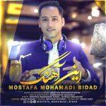 دانلود آهنگ جدید مصطفی محمدی بیداد به نام این آهنگ
