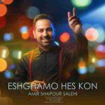دانلود آهنگ جدید امیرشاپور صالحی به نام عشقمو حس کن