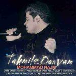 دانلود آهنگ جدیدمحمد نجم به نام تکمیل دنیام