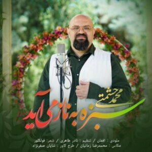 دانلود آهنگ محمد حشمتی سبزه به ناز می آید