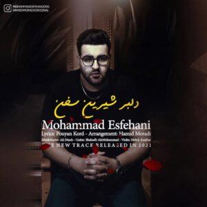 دانلود آهنگ محمد اصفهانی دلبر شیرین سخن