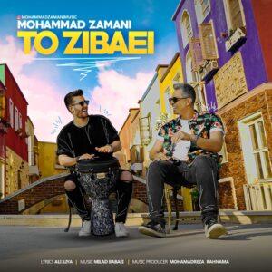 دانلود آهنگ محمد زمانی تو زیبایی